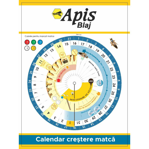 Calendar crestere matca