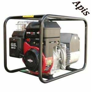 Generator electric 3,0 kW